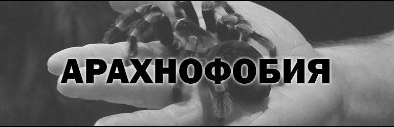 Что такое Арахнофобия